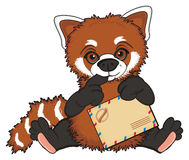 Red panda with envelope Royalty Free Stock Photo