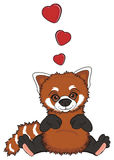 Red panda in love Royalty Free Stock Photos