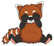 Red panda not see Royalty Free Stock Photo