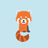 Red panda. Stock Photos