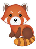 Red Panda Vector Illustration. Vector Illustration of a Cute Baby Red Panda Stock Photography
