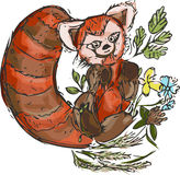 Red Panda. Watercolour Red Panda with grass illustration isolated on white background Royalty Free Stock Photos