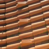 Red Pantiles Stock Image
