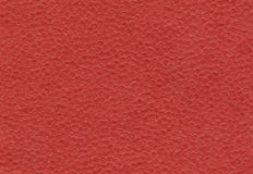 Red paper background Stock Images