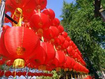 Red Paper Chinese lanterns under blue sky stock photos