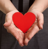 Red paper heart on the hands Stock Image
