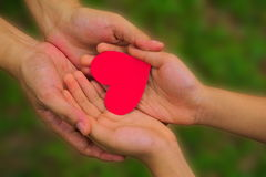 Red paper heart in hands. Royalty Free Stock Photography
