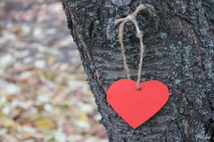 Red paper heart on the tree Royalty Free Stock Image