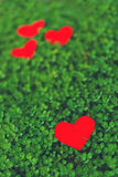 Red paper hearts in green clover Royalty Free Stock Photography