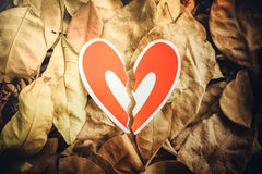 Red paper hearts on the ground. Red paper broken hearts on the ground is covered with dry autumn leaves, valentine day Royalty Free Stock Images