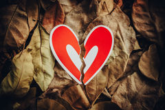 Red paper hearts on the ground. Red paper broken hearts on the ground is covered with dry autumn leaves, valentine day Stock Image