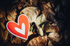 Red paper hearts on the ground. Is covered with dry autumn leaves, valentine day Stock Images