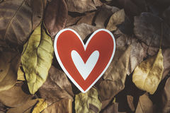 Red paper hearts on the ground. Is covered with dry autumn leaves, valentine day Royalty Free Stock Photography