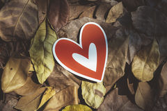 Red paper hearts on the ground. Is covered with dry autumn leaves, valentine day Royalty Free Stock Photos