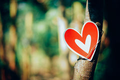 Red paper hearts paste with trees. In the garden Royalty Free Stock Photography