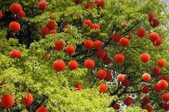 Hanging red lanterns Stock Photography