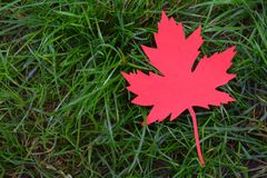 Red paper maple leaf on green grass. Hello Autumn concept. Copy space. Red paper maple leaf on green grass. Hello Autumn concept. Copy space royalty free stock photos