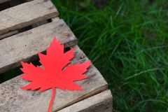 Red paper maple leaf on a wooden box on the green grass. Hello Autumn concept. Copy space. Red paper maple leaf on a wooden box on the green grass. Hello Autumn stock photography
