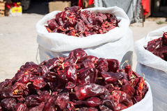 Red paprica in traditional vegetable market in Morocco Royalty Free Stock Photography
