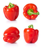 Red Paprika. Paprika vegetable set on white background. Collection of red pepper. Each one shot separately Stock Photos