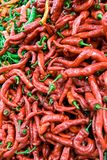 Red paprika. Stock Photography