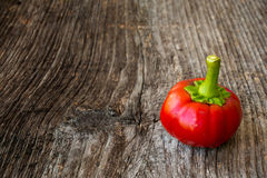 Red paprika Stock Images