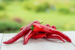 Red paprika with chilli peppers on wooden background Stock Photos
