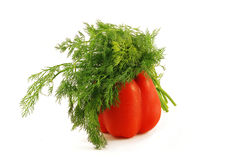 Red paprika with dill isolated on white background Stock Image