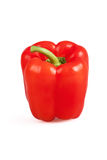 Red paprika isolated on white background with clipping path Stock Image