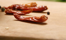 Red paprika pepper Stock Photography