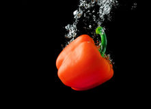 Red paprika in water Royalty Free Stock Images