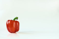 Red paprika. On the white background Stock Image