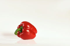 Red paprika. On the white background Royalty Free Stock Image
