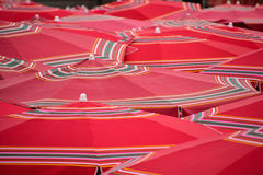 Red parasols in the market place Royalty Free Stock Photos