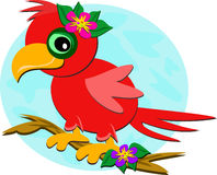 Red Parrot on a Branch. Here is a cute Red Parrot resting on a branch Royalty Free Stock Photo