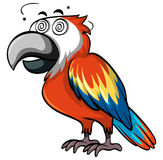 Red parrot with dizzy face Royalty Free Stock Images