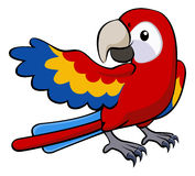 Red parrot illustration Royalty Free Stock Photography