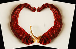Red passion. The shape of an heart made with a couple of peppers royalty free stock photo