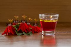 Red Passion Flower and Water Candle Royalty Free Stock Photos