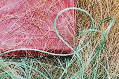 Red passport closeup caught in a fishing net. The concept of the fight against poachers and illegal sturgeon fishing. Top view royalty free stock photo