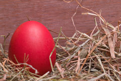 Red pastel easter egg Stock Images