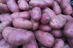 Fresh at market potatos at the market. Red patatos for sale at the supermarket Royalty Free Stock Image