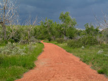 Red path. Red colored gravel path, surrounded by grass and trees, stormy skies in the background royalty free stock photography