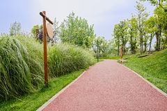 Red path in verdant green of sunny spring Royalty Free Stock Image