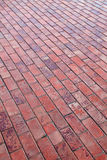 Red pavers Royalty Free Stock Images