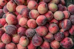 Red peach fruit on wooden table royalty free stock photo
