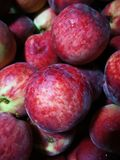 Red peaches. Close up of full red peaches Royalty Free Stock Photo