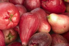 Red Pear Fruit Two. Red Fruit Close Up royalty free stock photo