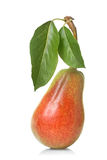 Red pear with leaves isolated. On white royalty free stock photos