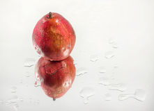 Red pear Stock Images